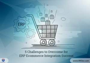 5 Challenges to Overcome for E-commerce ERP Integration Success
