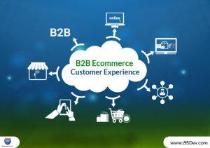 B2B Ecommerce Customer Experience -