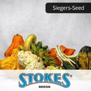 Sieger-seed